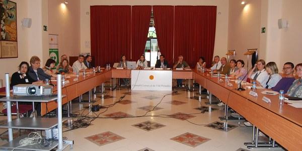 Constitució del Consell de Salut de l'Alt Penedès