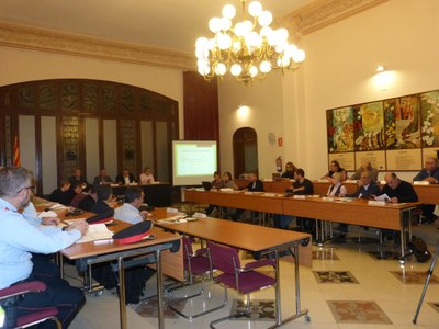 20200130 Consell Alcaldes - Dreta.jpg