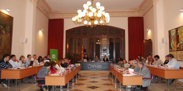 Tot i l'abstenció de CiU, el Ple del Consell Comarcal de l'Alt Penedès s'adhereix al manifest que demana un nou sistema de govern a Caixa Penedès